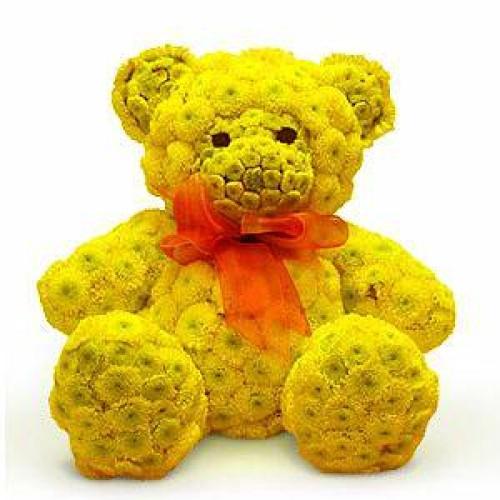 Купить на заказ Заказать Жёлтый мишка с доставкой по Алматы с доставкой в Алматы