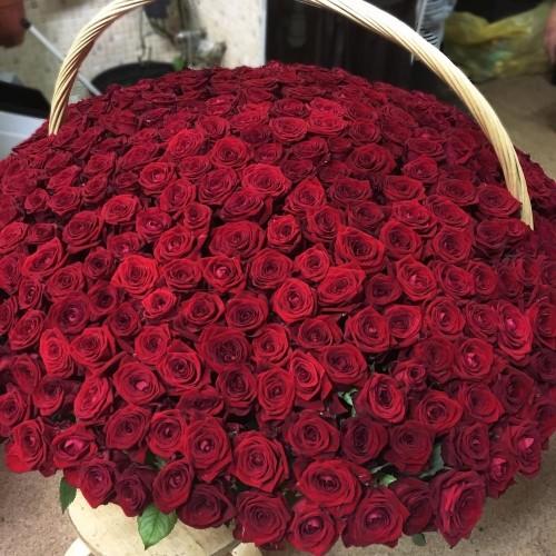 Купить на заказ Заказать 1001 роза с доставкой по Алматы с доставкой в Алматы