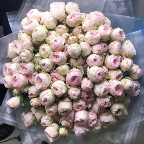 Купить на заказ Заказать 101 пионовидные розы с доставкой по Алматы с доставкой в Алматы