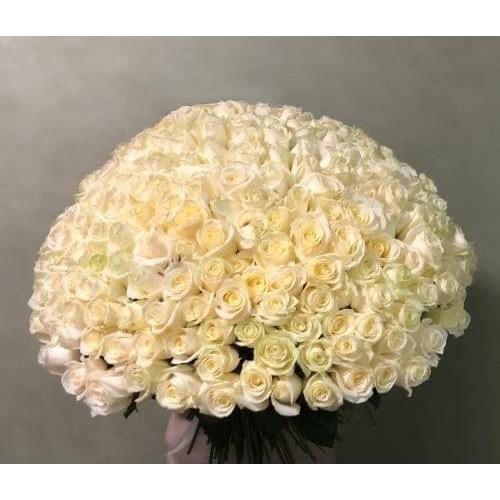 Купить на заказ Заказать 201 роза с доставкой по Алматы с доставкой в Алматы