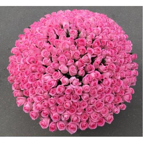 Купить на заказ Заказать 501  роза с доставкой по Алматы с доставкой в Алматы