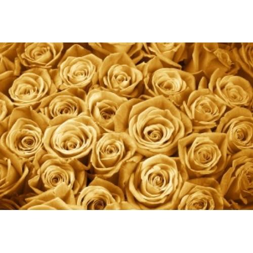 Купить на заказ Заказать Золотые розы 15 шт с доставкой по Алматы с доставкой в Алматы