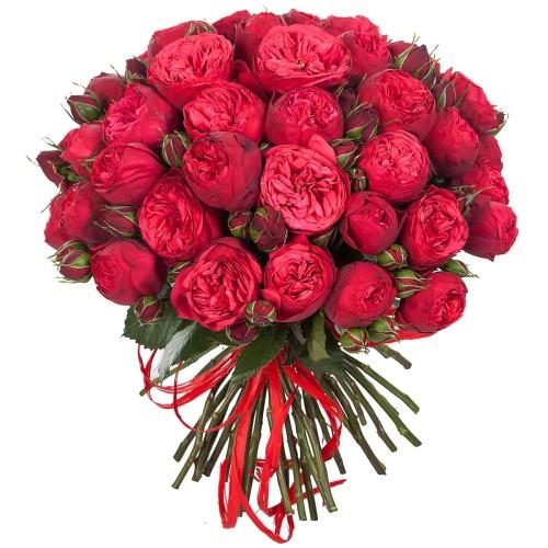 Купить на заказ Заказать Букет из 51 пионовидные розы с доставкой по Алматы с доставкой в Алматы