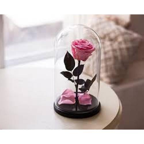 Купить на заказ Заказать Роза в колбе розовая с доставкой по Алматы с доставкой в Алматы