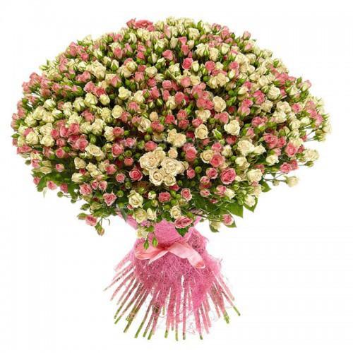 Кустовые розы в Алматы
